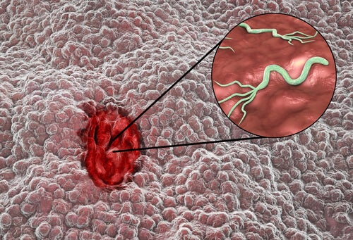 Imagem microscopica do omeprazol