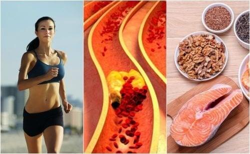 6 hábitos que ajudam a controlar o colesterol de forma natural