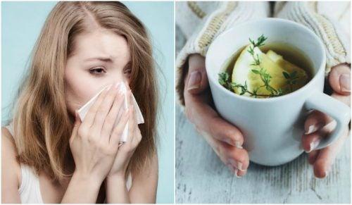 Alivie a tosse e o resfriado com uma infusão de tomilho, limão e mel