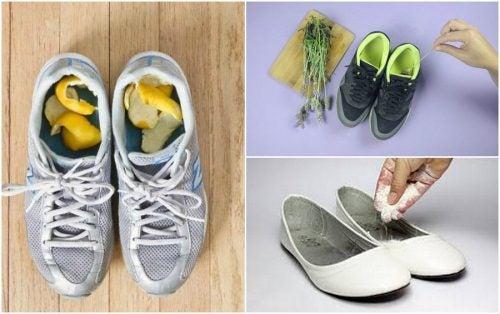 Como eliminar o mau cheiro do calçado com 5 remédio caseiros