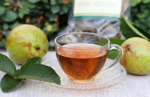 Chá de folhas de goiaba para controlaros níveis de açúcar no sangue