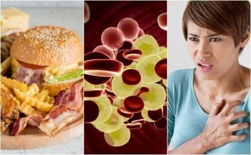 O colesterol alto: por que é um perigo para a saúde e como reduzir seus níveis