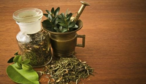 Como preparar um álcool de ervas para aliviar as dores articulares