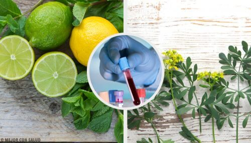 Descubra o carrulim, o remédio para limpar o sangue com arruda e limão