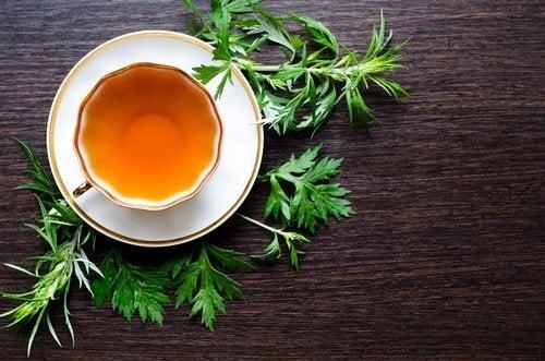 Chá de losna para combater o fígado gorduroso naturalmente