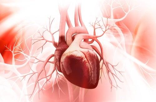 Saúde cardiovasvular