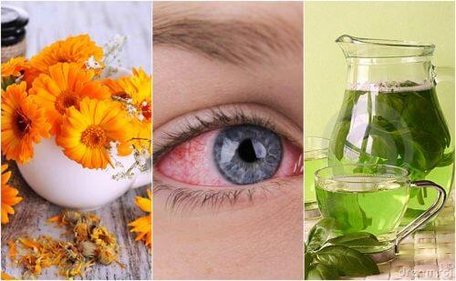 Os 5 melhores remédios para aliviar a conjuntivite naturalmente