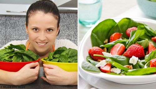 Receitas com espinafre que você deve incluir na sua dieta