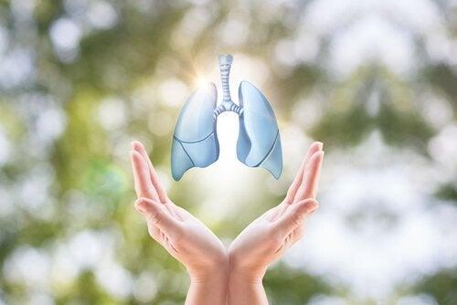 Mão segurando pulmão com câncer