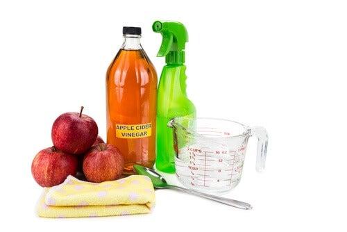 Vinagre de maçã e limão ajudam a desinfetar o seu banheiro
