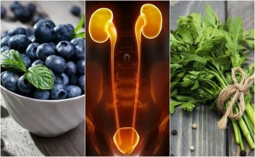 7 alimentos para proteger os rins e a bexiga