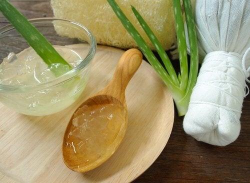 Aloe vera para aliviar as rachaduras nos pés