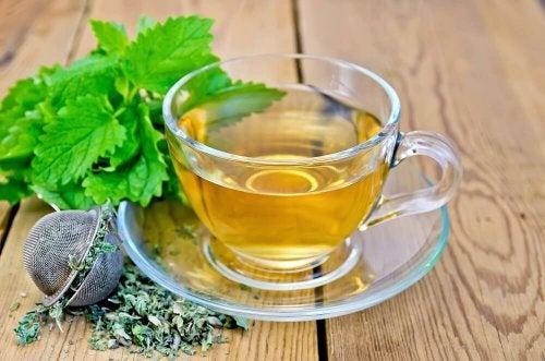 Chá de melissa para cuidar da digestão