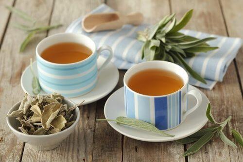 Chá de urtiga combate as ondas de calor da menopausa