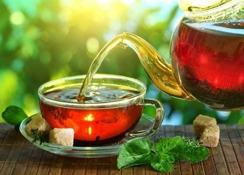 Chá de trevo vermelho para estimular o sistema linfático