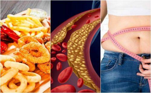 Fatores que aumentam o colesterol