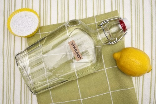 Limpa-vidros ecológico com vinagre e limão