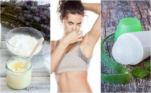 5 desodorantes caseiros para eliminar o mau cheiro das axilas
