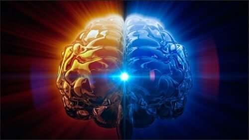 Glândula pineal: a reguladora de ciclos e o olho vestigial