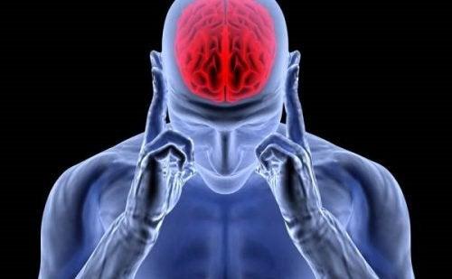 Adrenalina: o hormônio da ativação, estresse e dores de cabeça