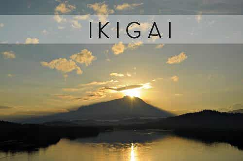 Ikigai, o segredo japonês para viver melhor