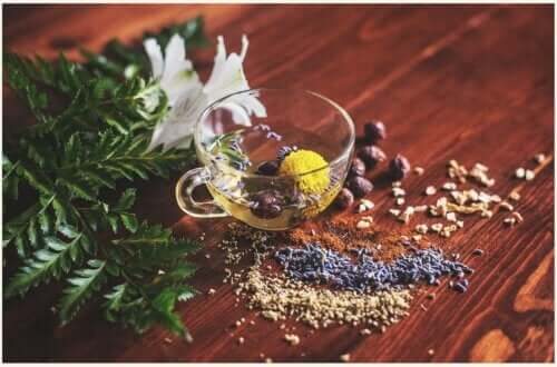 As infusões de ervas trazem benefícios à saúde?