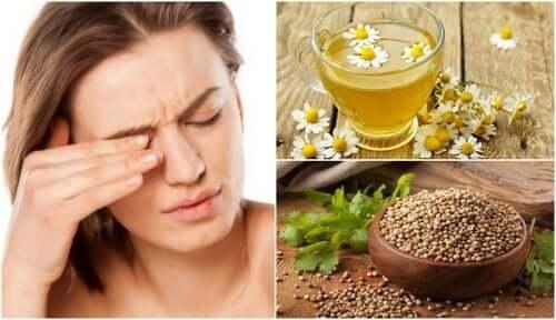 5 remédios naturais para reduzir a coceira nos olhos