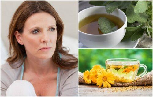 5 remédios naturais que ajudam a reduzir as ondas de calor da menopausa