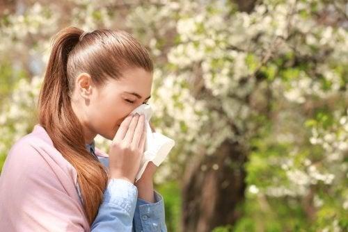 Alimentos para combater a alergia sazonal