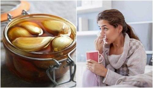 Remédio caseiro de mel e alho para fortalecer a saúde respiratória