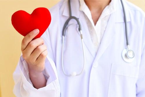 A phisalia contribui para a saúde cardíaca