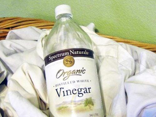 Vinagre branco para recuperar o branco da sua roupa