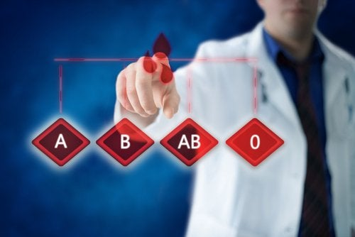 5 razões importantes para conhecer o tipo de sangue dos membros da sua família