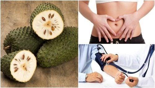 7 boas razões para incluir graviola na dieta
