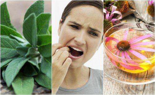 Como combater a gengivite com 5 remédios de origem natural