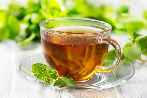 As propriedades e usos da hortelã podem ser obtidas a partir do chá