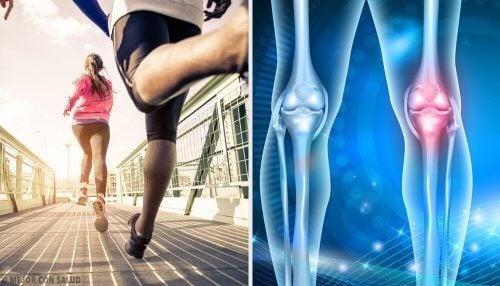 Hábitos que provocam dor no joelho