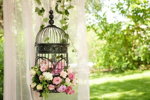 Gaiola com flores de decoração