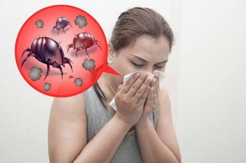 Alergia causada pela presença de ácaros em casa