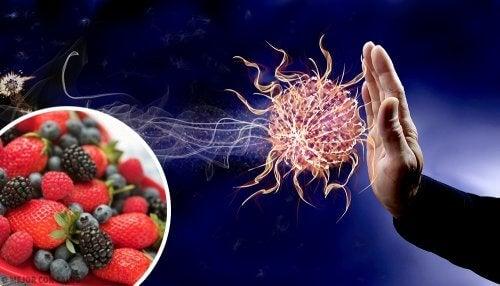 9 alimentos para aumentar as defesas do corpo