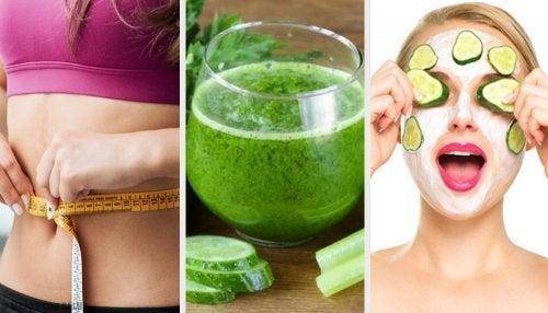 Razões e receitas para beber suco de pepino