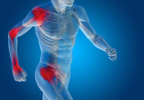 O que devemos saber sobre cartilagens e ligamentos?