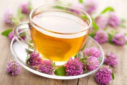 Chá de valeriana para dormir melhor
