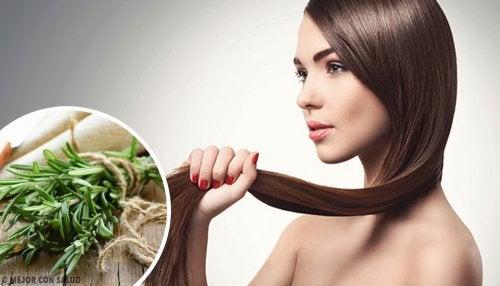 Ervas e especiarias para promover o crescimento do cabelo