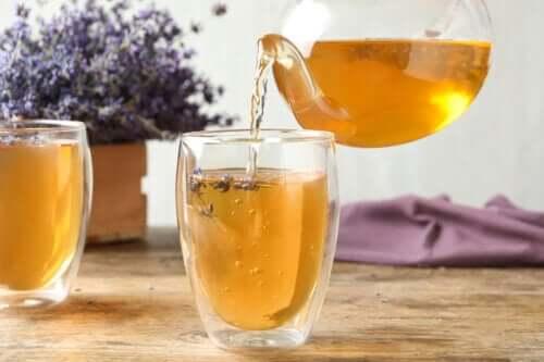 5 infusões naturais para combater a cistite