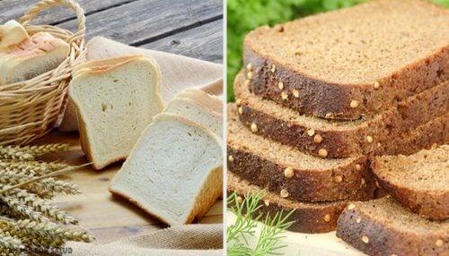 Pão branco ou integral: qual é a melhor opção?