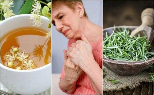 5 remédios à base de ervas para o tratamento da artrite