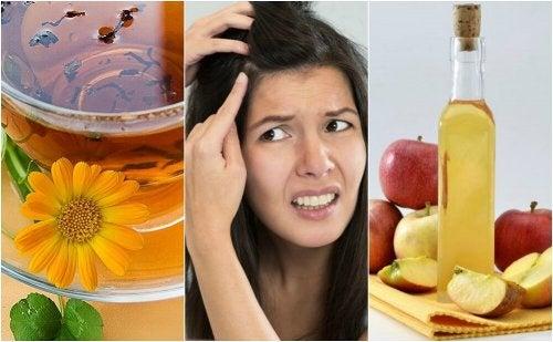 5 remédios naturais para o couro cabeludo sensível