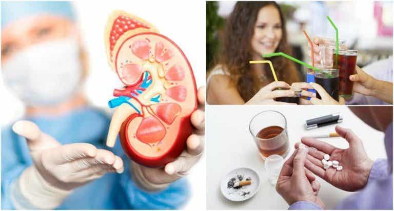 8 hábitos que podem deteriorar a saúde dos rins