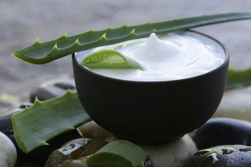 Tratamento de aloe vera, leite de coco e limão para ter um cabelo saudável